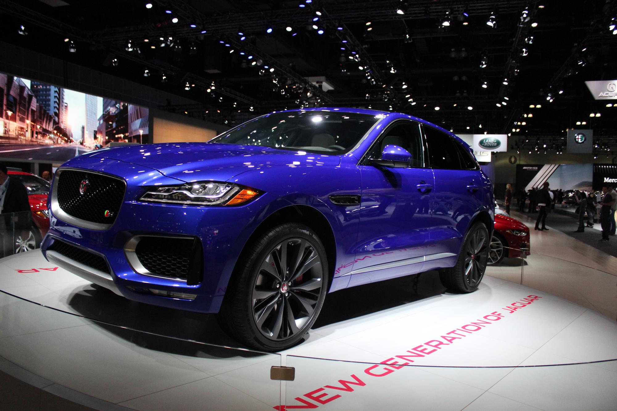 Surprisingly Jaguar
